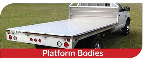 feature-platform-body